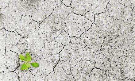 La guerra del agua ¿Ficción o crisis ineludible? por Dr. Jonathan Azolas Cepeda